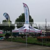 Promotional 10x10 heavy duty canopy canvas tent                                                                                                         Supplier's Choice