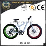26'' Aluminium Alloy Red And Green Rims Big Tire Fat Bike Bicycle