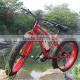 Changzhou Haoling Hummer Fat Electric bike - Hot sale 26*4.0 fat tyre /snow big wheel big tyre electric bike for sale