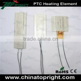 100*21*5mm High-power PTC thermostat heating element Ultra-low temperature heater Electric Plate 220V 12V 24V 110V