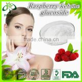 Pure natural Raspberry ketone glucoside/Raspberry ketone