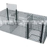 steel wire catch bird cage /bird&pigeon cage trap(foldable)/multi catch bird cage/catch canary trap cage