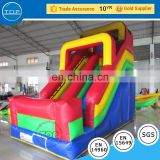 TOP INFLATABLES Professional parts inflatable super adult water slide