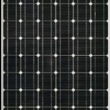 335watt Mono Crystalline Solar Modules