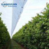 PE transparent woven tarpaulin cherry tree woven fabric cover