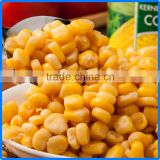 types of frozenccanned sweet kerenel corn with balanced nutrition made in Chinese factory