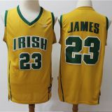 St.Vincent-St.Mary Fighting Irish #23 James Yellow Jersey