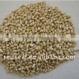 New crop Chinese pine nut kernels