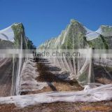 Agricultural Anti hail Net,Anti Hail Net,hail Protection net for the fruit tree(Manufacture)
