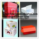 Collapsible polypropylene corrugated plastic Corolast boxes for moving and packing