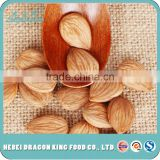 2016 high quality seeds kernels raw sweet apricot kernel for drink, beverage, food companies