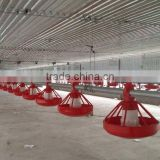 complete controlled automatic poultry chicken farm Equipment for broiler