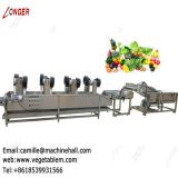 Tomato Washer and Dryer|Fruit and Vegetable Washing and Drying Machine|Strawberry Cleaning Line