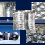 Hot Dipped Galvanized Steel Iron Wire zinc coated steel wire                                                                         Quality Choice