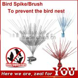 long life Bird Spikes brush for smooth flow of lines