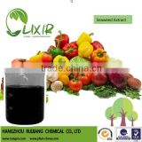 Liquid Algae/Alga Fertilizer, Seaweed Extract organic fertilizer/Alga fertilizer