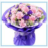 Export fresh flowers fresh Carnations for banquets or ceremonies decoration