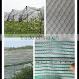 Drawing Plastic Modling Type fruit tree anti hail net, tela antigranizo,contro la grandine rete
