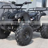 cheap chinese 125cc ATV for sale cvt chain transmission with epa