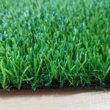 Best synhetic turf for backyard garden