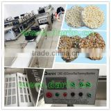 Industrial Nutritional Cereal Bar Machine/Plant/Making Machine/Processing Line/Production Line