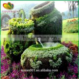 Customized artificial plants topiary plastic artificial plants sculpture plants outdoor artificial plants topiary decoration