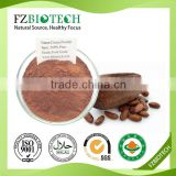100% pure nature Low price cacao powder bulk Popular brands of cocoa powder