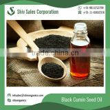 Best Selling Black Cumin Seed Oil Available at Wholesale Price
