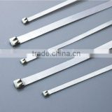 Teeth Type Stainless Steel Cable Ties,304 Stainless steel cable tie