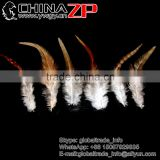 Top Supplier ZPDECOR Wholesale Natural DIY Chicken Rooster Saddle Feathers for Decoration