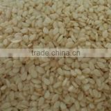 hulled sesame seed export to vietnam