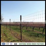 ranch fence camels livestock fence deer fence fixed knot fencing