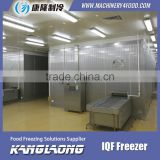 Hot Selling Fish Quick Freezer With Good Quality