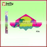 27*33cm cheap custom made kites with EN71