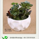 16cm Artificial Succulent in Ceramic Pot