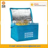 Small cheap customised food delivery Cooler Bags                                                                         Quality Choice                                                                     Supplier's Choice