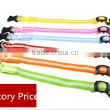 Pet Dog Collar LED Flashing Glow Necklace Leashes Cat Collars Adjustable Nylon 6 Colors 3size 2.5cm For Dog Safety Factory