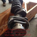 dongfeng truck parts 4BT diesel engine crankshaft 3965010