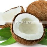 Coconut Milk Powder Ingredient for cakes/biscuits/ cookies Baking