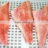 Frozen red fish fillet
