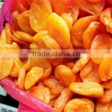 Market price best selling fresh Preserved Apricot