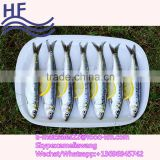 China factory direct price cheap frozen sardine fish