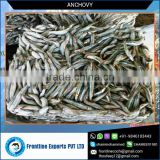 Premium Quality Best Dried and Frozen Anchovy Fish for Exporter