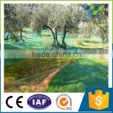 HDPE Rubber green color oliver fruits harvest net