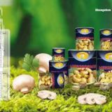 INquiry about Canned whole mushroom