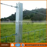 High Quality steel cattle t fence post/t bar fence post                                                                         Quality Choice