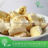 Freeze Dried Competitive Price Durian Powder for drinks