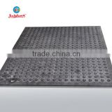 customized vaccum forming plastic tray