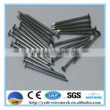 common iron nails /roof tile nail/steel nail/black concrete steel nails/wire nails price