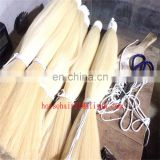 tapered horsehair/single drawn horse tail hair/blunt horse tail hair